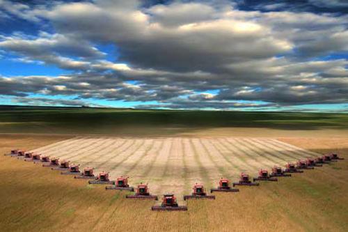 Ekologické zemědělství datování